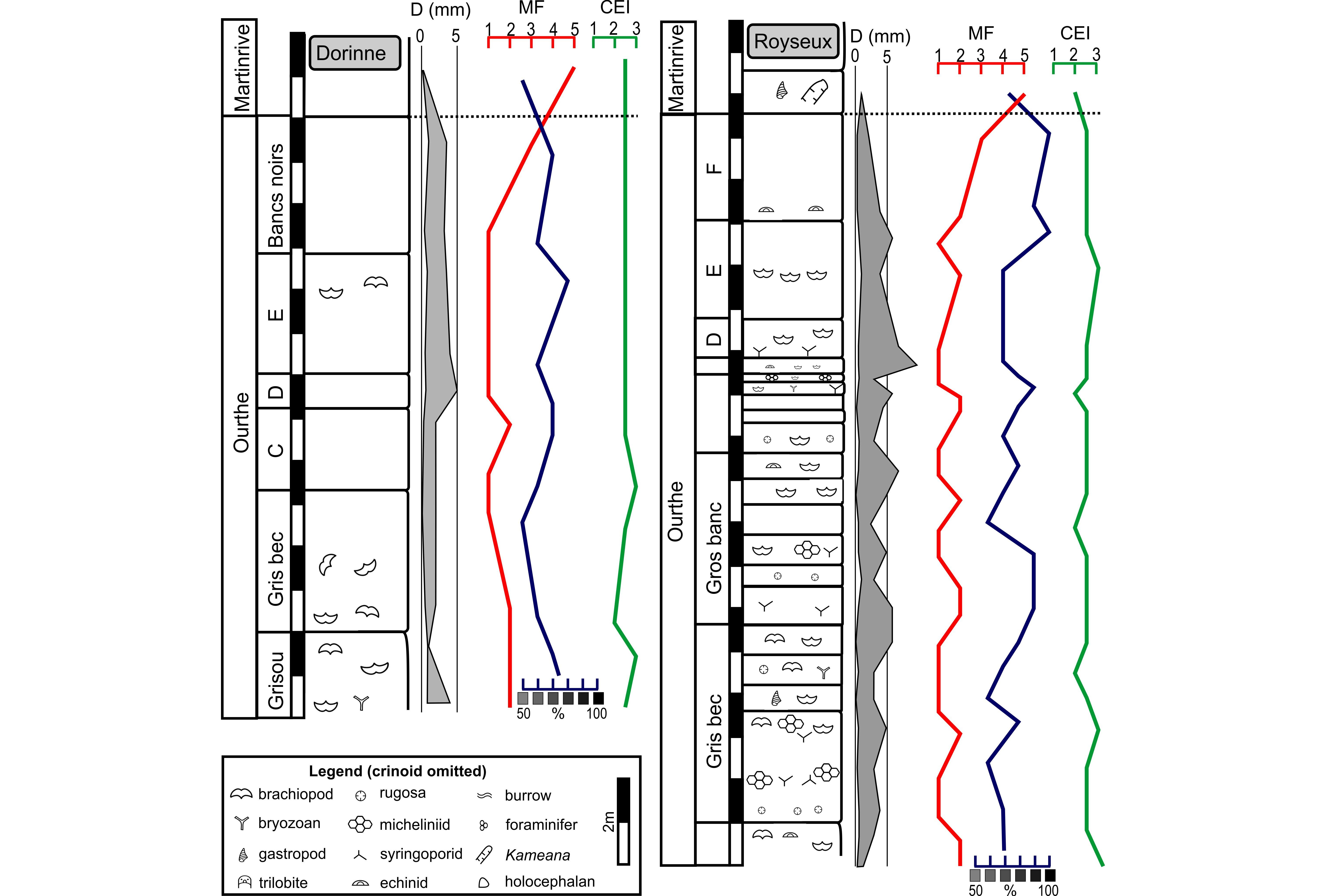 Palaeoecology Of The Upper Tournaisian Mississippian Crinoidal 1911 Pistol Diagram Http Wwwthefedoraloungecom Showthreadphp Schematic Profiles Ourthe Fm In Royseux Disused Quarry And Dorrine Legend Mf Microfacies See Main Text Cei Crinoid Erosion Index